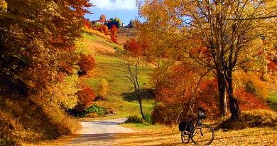 До неделя  ще е златна есен, а после студ